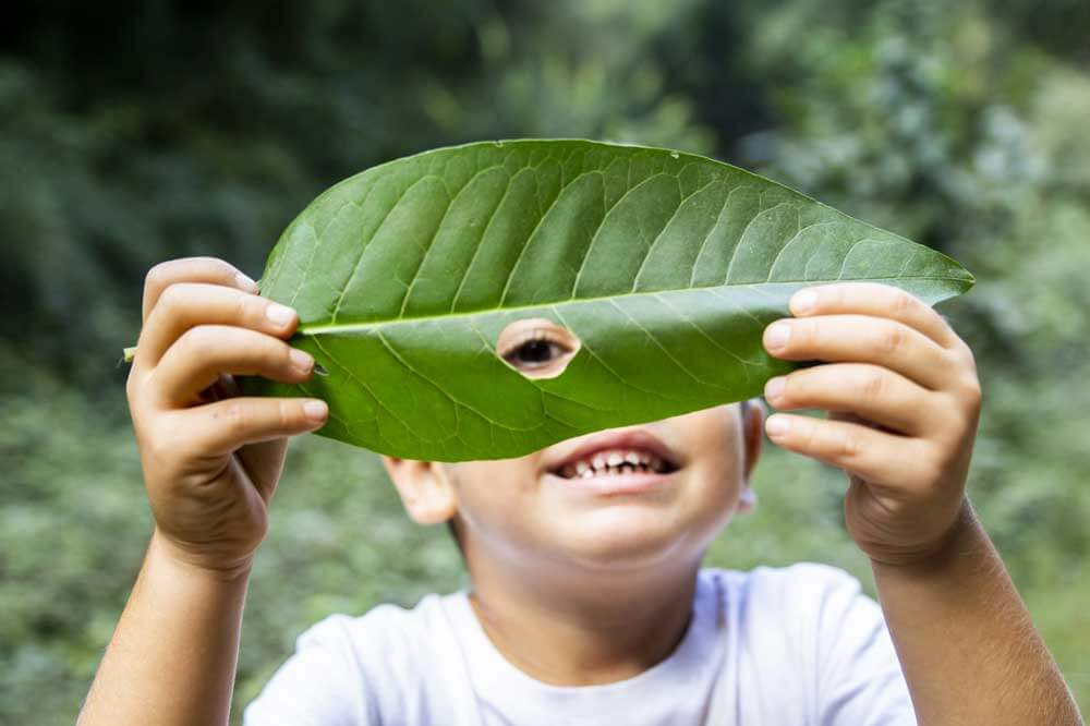nature play early learning